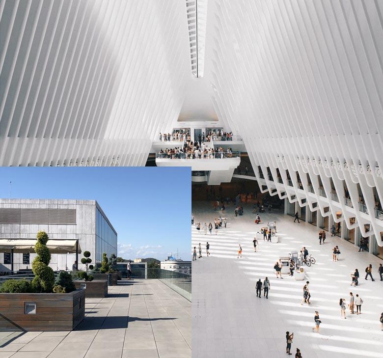 cityhall-contact-pic1